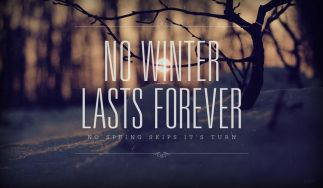 No winter